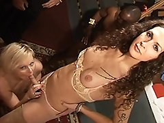 Horny transsexual Nikki getting her juicy cock sucked